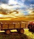 pndr-dezvoltare-rurala-agricultura