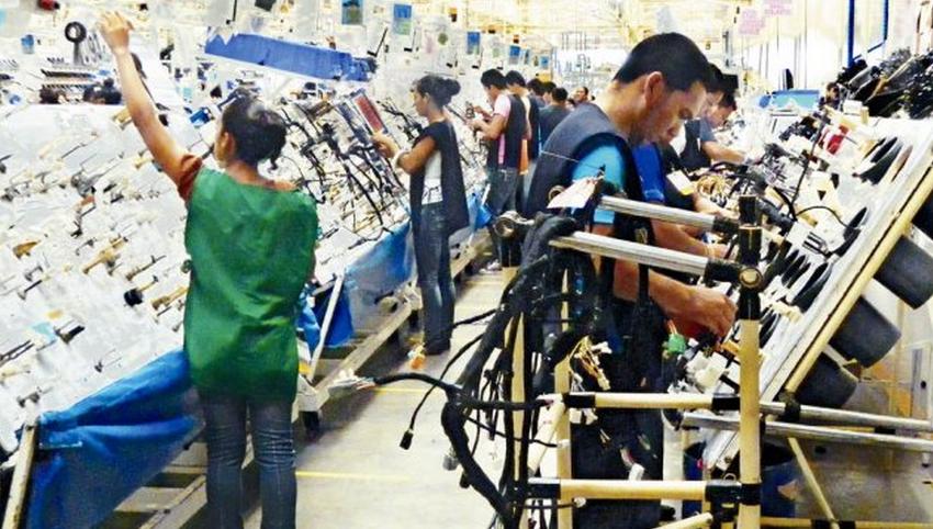 Tata Yazaki Wiring Harness : Ce firme au făcut cele mai multe angajări în