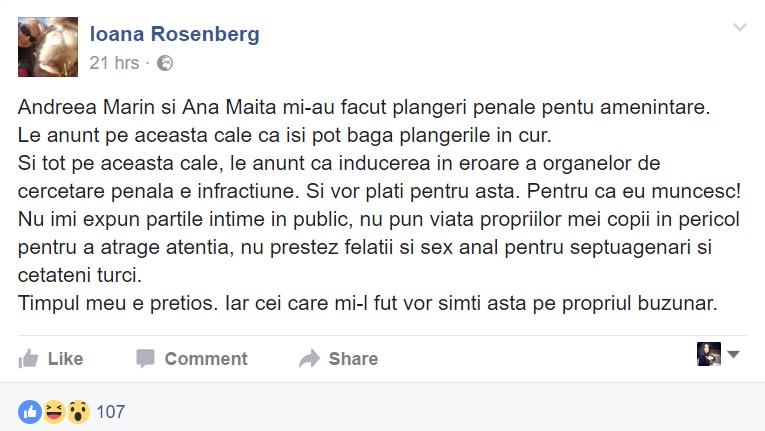 ioana rosenberg